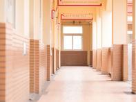 广佛交界片区投1.5亿建小学 大沥打造同城教育乐土 - 乐有家